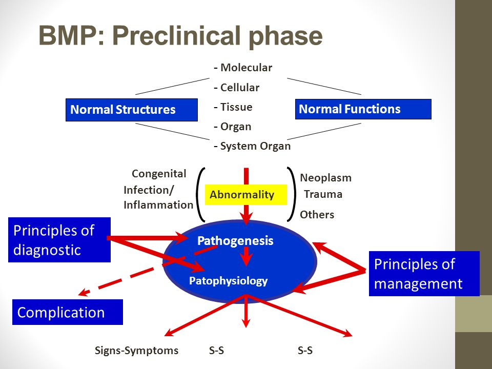 BMP: Preclinical phase Normal Structures Normal Functions - Molecular - Cellular - Tissue - Organ - System Organ Pathogenesis Abnormality Congenital I