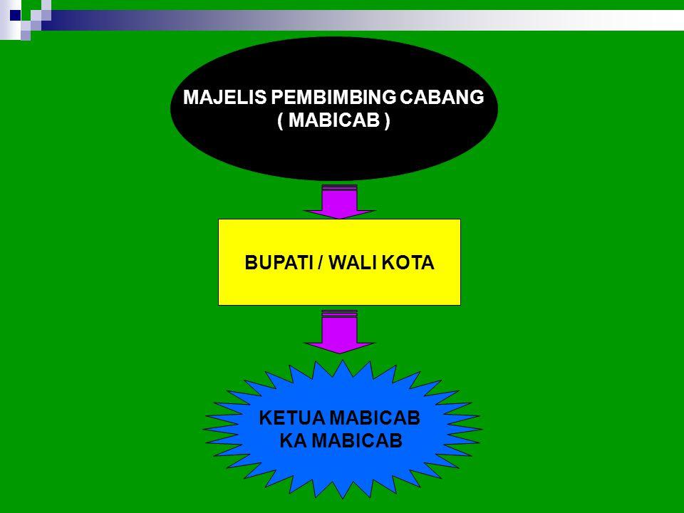 MAJELIS PEMBIMBING CABANG ( MABICAB ) BUPATI / WALI KOTA KETUA MABICAB KA MABICAB