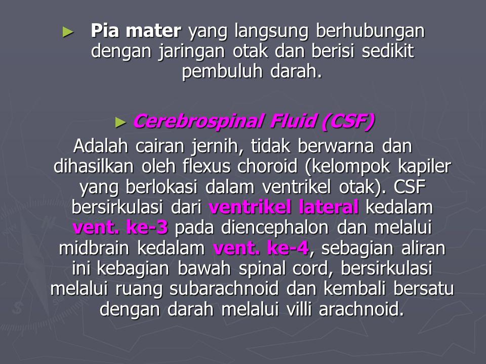 ► Pia mater yang langsung berhubungan dengan jaringan otak dan berisi sedikit pembuluh darah. ► Cerebrospinal Fluid (CSF) Adalah cairan jernih, tidak