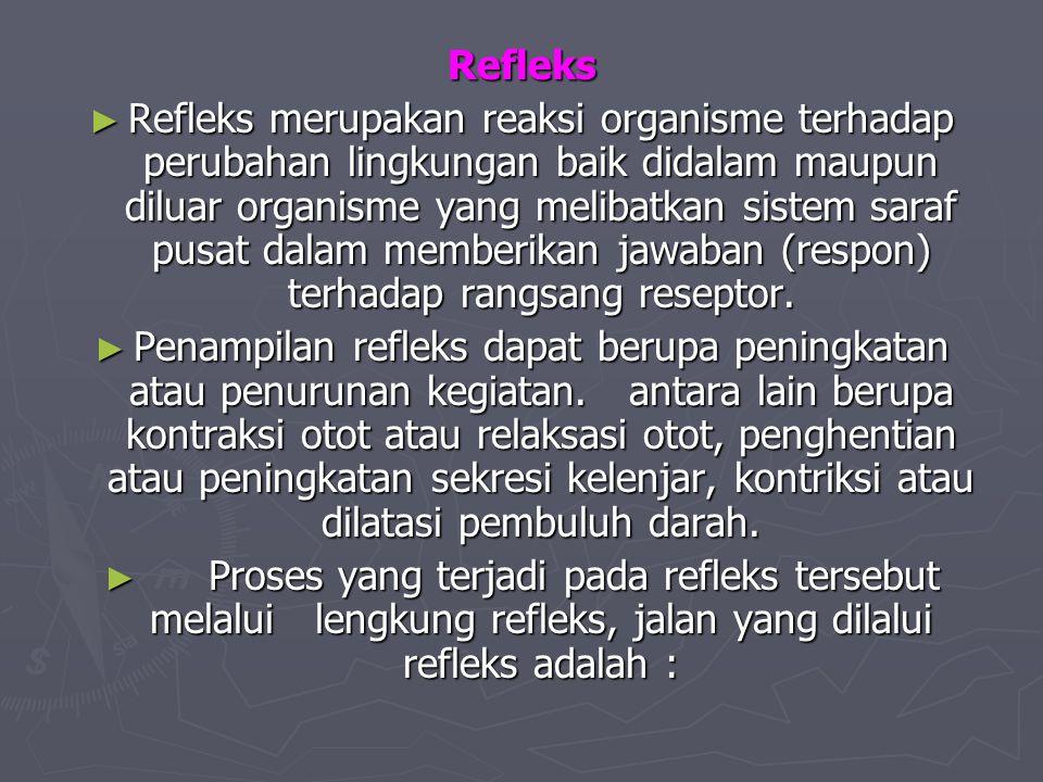 Refleks ► Refleks merupakan reaksi organisme terhadap perubahan lingkungan baik didalam maupun diluar organisme yang melibatkan sistem saraf pusat dal