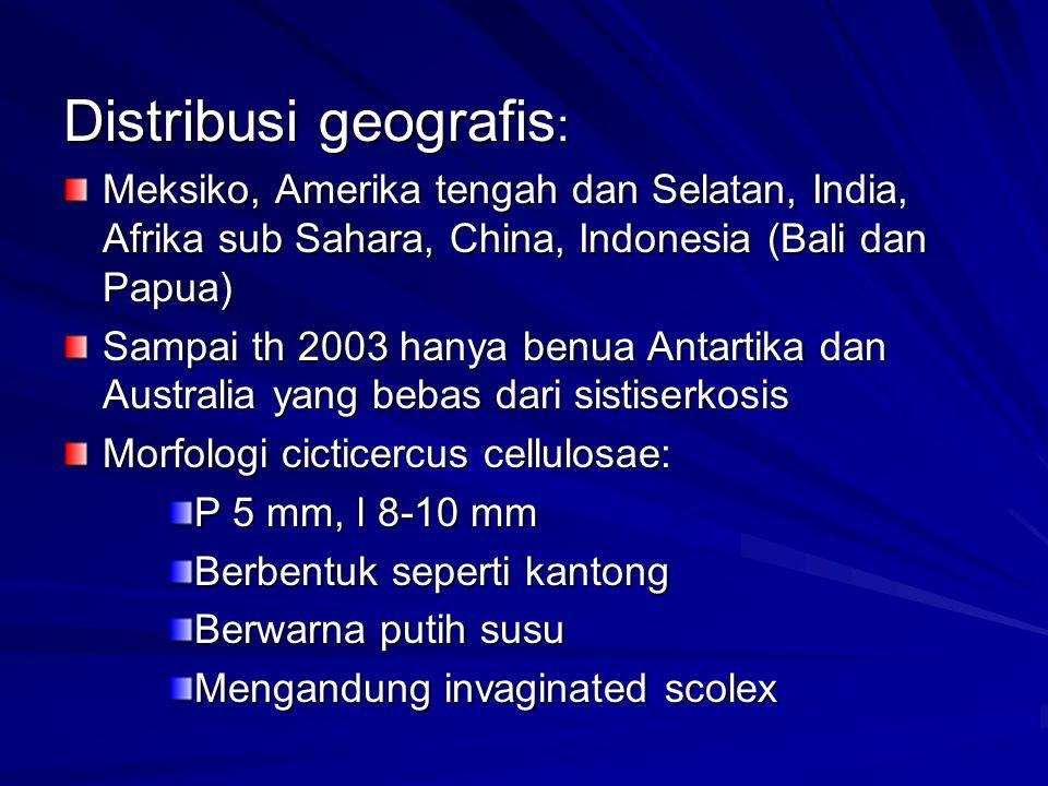 Distribusi geografis : Meksiko, Amerika tengah dan Selatan, India, Afrika sub Sahara, China, Indonesia (Bali dan Papua) Sampai th 2003 hanya benua Ant