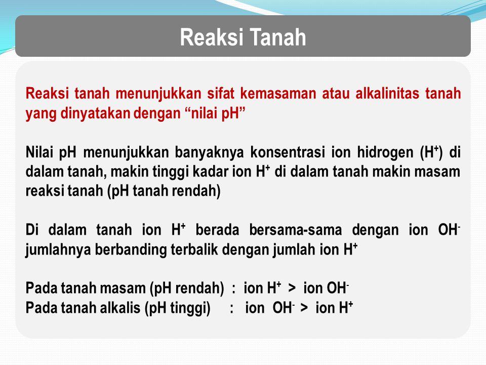 Reaksi Tanah Reaksi tanah menunjukkan sifat kemasaman atau alkalinitas tanah yang dinyatakan dengan nilai pH Nilai pH menunjukkan banyaknya konsentrasi ion hidrogen (H + ) di dalam tanah, makin tinggi kadar ion H + di dalam tanah makin masam reaksi tanah (pH tanah rendah) Di dalam tanah ion H + berada bersama-sama dengan ion OH - jumlahnya berbanding terbalik dengan jumlah ion H + Pada tanah masam (pH rendah) : ion H + > ion OH - Pada tanah alkalis (pH tinggi) : ion OH - > ion H +