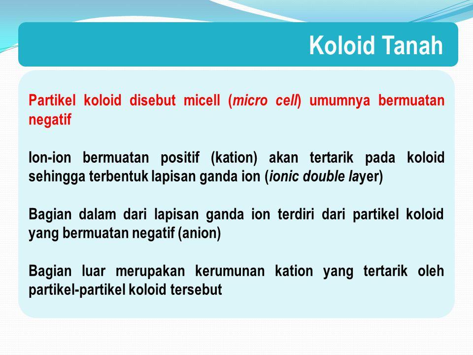 Partikel koloid disebut micell ( micro cell ) umumnya bermuatan negatif Ion-ion bermuatan positif (kation) akan tertarik pada koloid sehingga terbentuk lapisan ganda ion ( ionic double la yer) Bagian dalam dari lapisan ganda ion terdiri dari partikel koloid yang bermuatan negatif (anion) Bagian luar merupakan kerumunan kation yang tertarik oleh partikel-partikel koloid tersebut Koloid Tanah