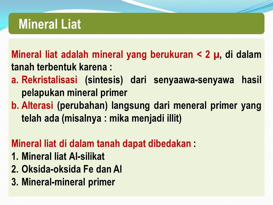 Mineral Liat Mineral liat adalah mineral yang berukuran < 2 µ, di dalam tanah terbentuk karena : a.Rekristalisasi (sintesis) dari senyaawa-senyawa hasil pelapukan mineral primer b.Alterasi (perubahan) langsung dari meneral primer yang telah ada (misalnya : mika menjadi illit) Mineral liat di dalam tanah dapat dibedakan : 1.Mineral liat Al-silikat 2.Oksida-oksida Fe dan Al 3.Mineral-mineral primer