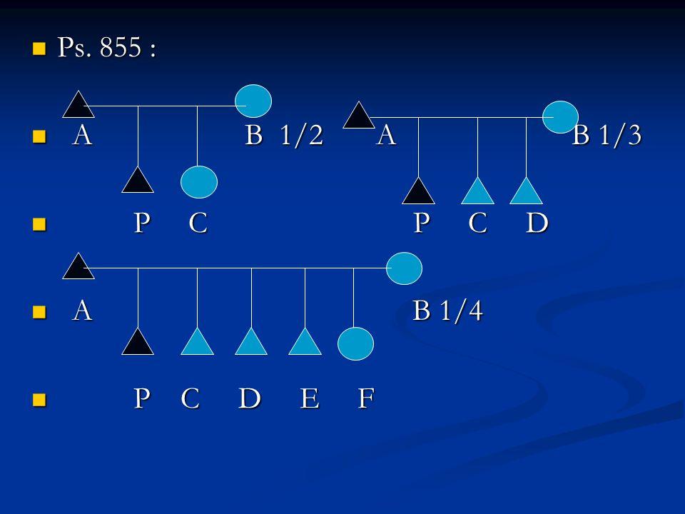 Ps. 855 : Ps. 855 : A B 1/2 A B 1/3 A B 1/2 A B 1/3 P C P C D P C P C D A B 1/4 A B 1/4 P C D E F P C D E F