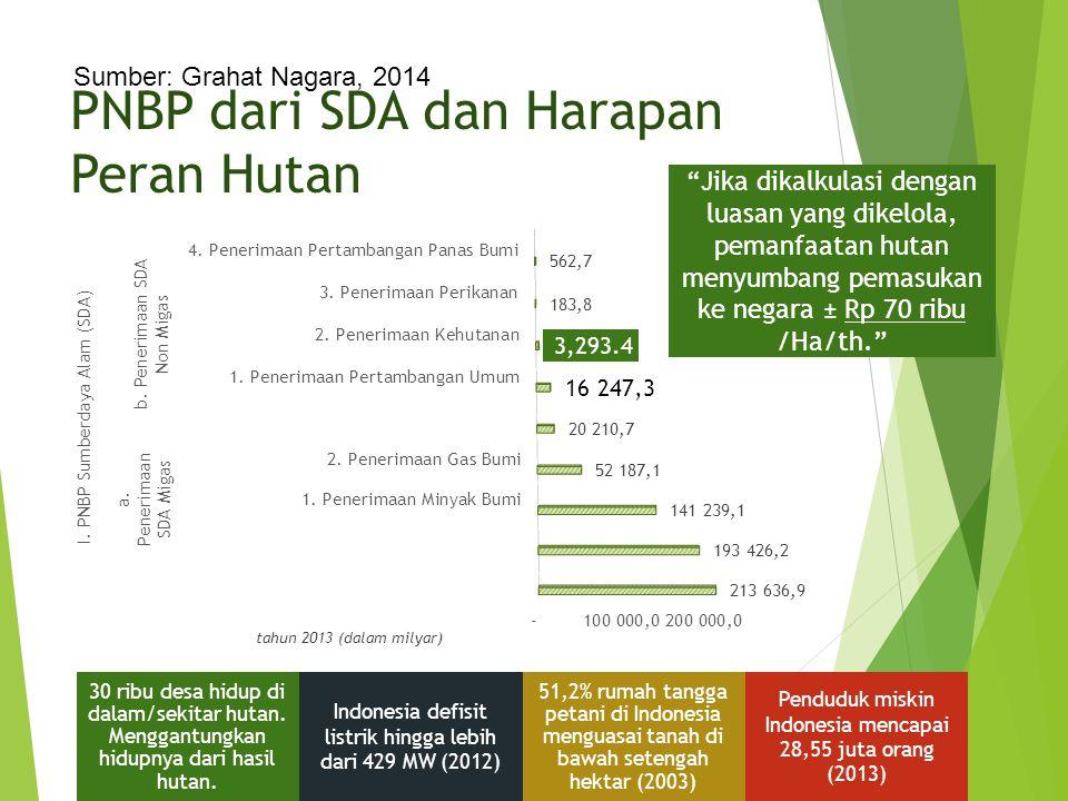 """PNBP dari SDA dan Harapan Peran Hutan tahun 2013 (dalam milyar) """"Jika dikalkulasi dengan luasan yang dikelola, pemanfaatan hutan menyumbang pemasukan"""