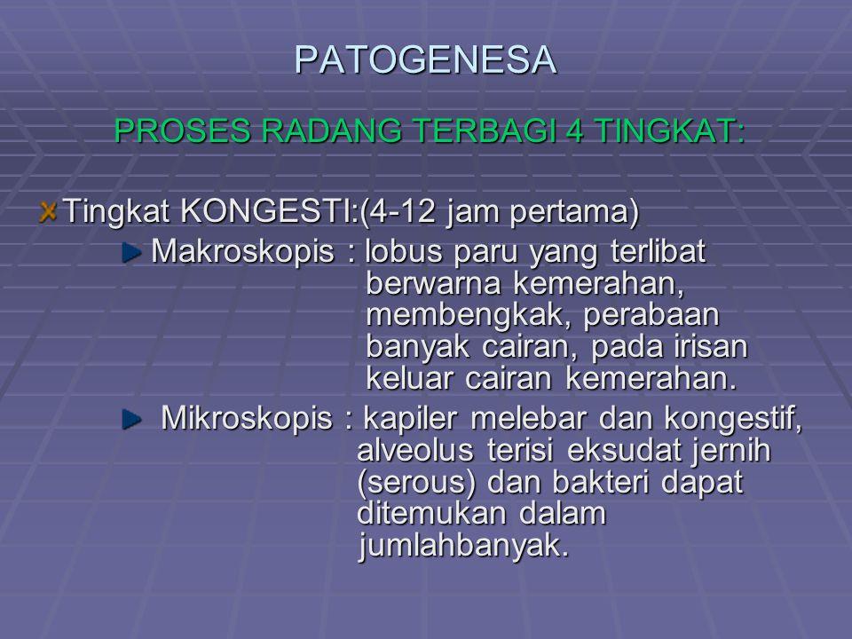 PATOGENESA PROSES RADANG TERBAGI 4 TINGKAT: Tingkat KONGESTI:(4-12 jam pertama) Makroskopis : lobus paru yang terlibat berwarna kemerahan, membengkak,