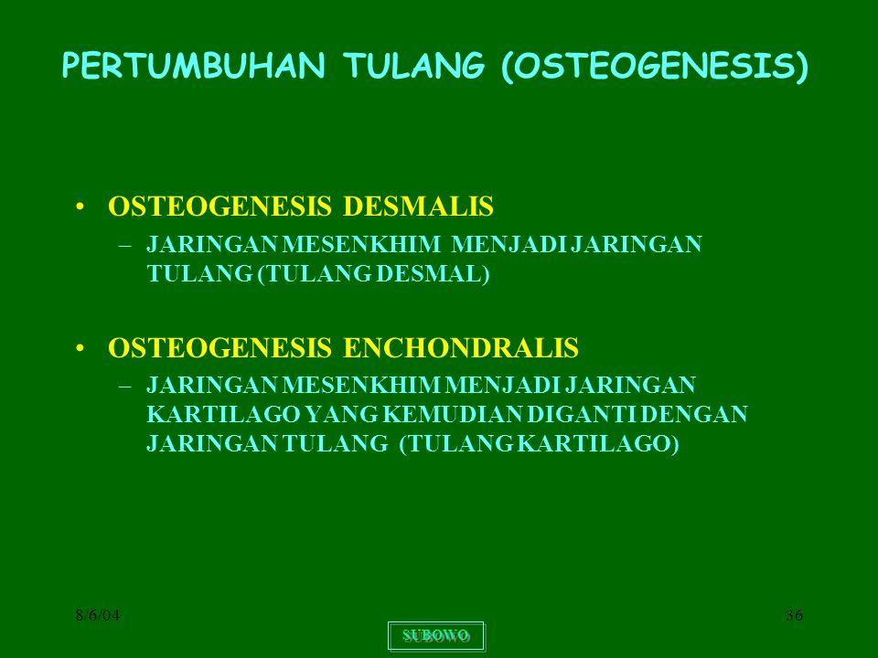 8/6/0436 PERTUMBUHAN TULANG (OSTEOGENESIS) OSTEOGENESIS DESMALIS –JARINGAN MESENKHIM MENJADI JARINGAN TULANG (TULANG DESMAL) OSTEOGENESIS ENCHONDRALIS