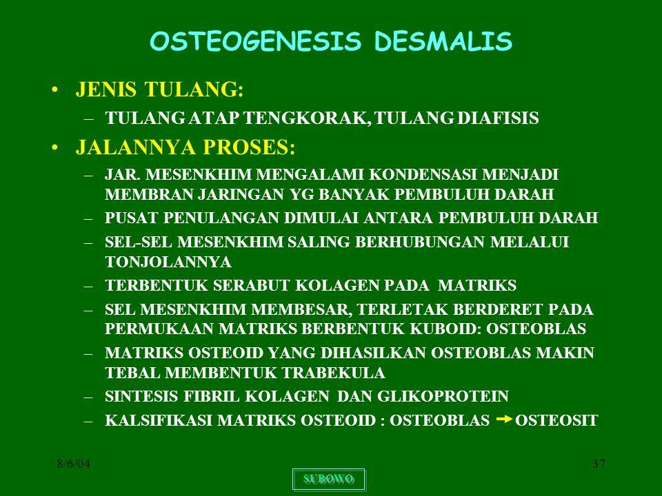 8/6/0437 OSTEOGENESIS DESMALIS JENIS TULANG: –TULANG ATAP TENGKORAK, TULANG DIAFISIS JALANNYA PROSES: –JAR. MESENKHIM MENGALAMI KONDENSASI MENJADI MEM