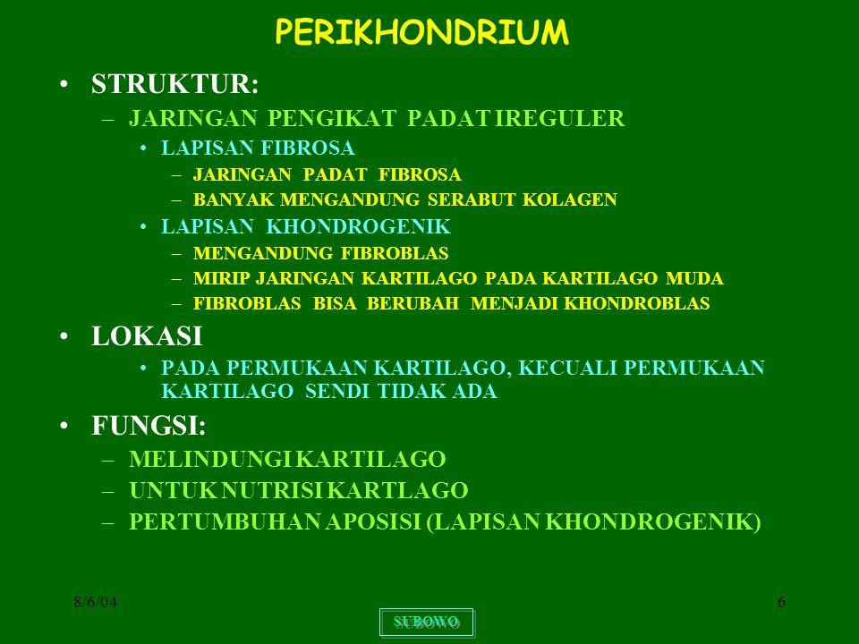 8/6/0447 PERUBAHAN STRUKTUR JARINGAN TULANG PERUBAHAN STRUKTUR BERLANGSUNG SETELAH TER- BENTUK JARINGAN TULANG PRIMER DENGAN SISTEM HAVERS PRIMITIF BERLANGSUNG SEPANJANG UMUR PERUBAHAN DIMULAI DARI PEMBENTUKAN RONGGA- RONGGA OLEH SEL OSTEOKLAS APABILA RONGGA TELAH MEMBESAR DIMULAI OSTEO- GENESIS DENGAN MELETAKKAN SEL-SEL OSTEO- PROGENITOR YANG BERUBAH MENJADI OSTEOBLAS OSTEOBLAS MENGHASILKAN MATRIKS OSTEOID YANG AKAN DIKALSIFIKASI OSTEOGENESIS DIMULAI DI SEKELILING PEMBULUH DARAH MEMBENTUK LEMBAR DEMI LEMBAR SEHINGGA RONGGA YANG SEMULA BESAR SEMAKIN SEMPIT AKHIRNYA TERBENTUK SISTEM HAVERS BARU SISTEM HAVERS LAMA YANG TIDAK KENA EROSI MEN- JADI LAMELA INTERSTITIALIS SUBOWO