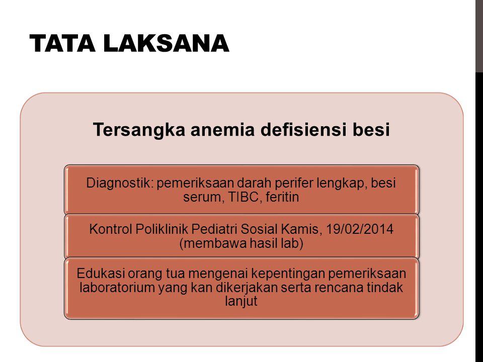 TATA LAKSANA Tersangka anemia defisiensi besi Diagnostik: pemeriksaan darah perifer lengkap, besi serum, TIBC, feritin Kontrol Poliklinik Pediatri Sos