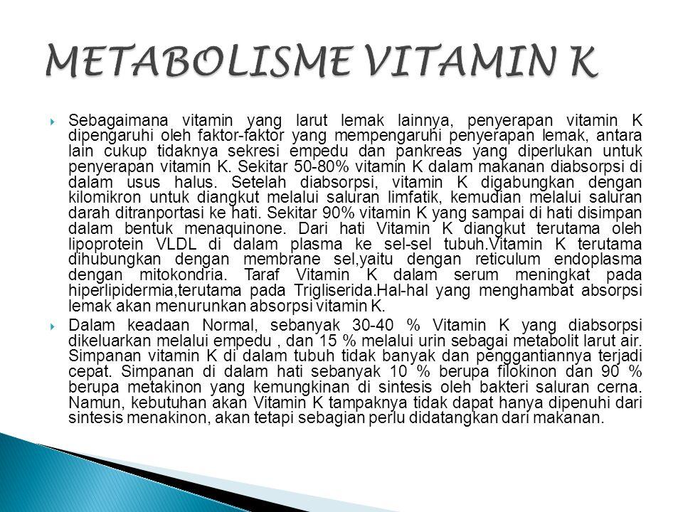  Sebagaimana vitamin yang larut lemak lainnya, penyerapan vitamin K dipengaruhi oleh faktor-faktor yang mempengaruhi penyerapan lemak, antara lain cu