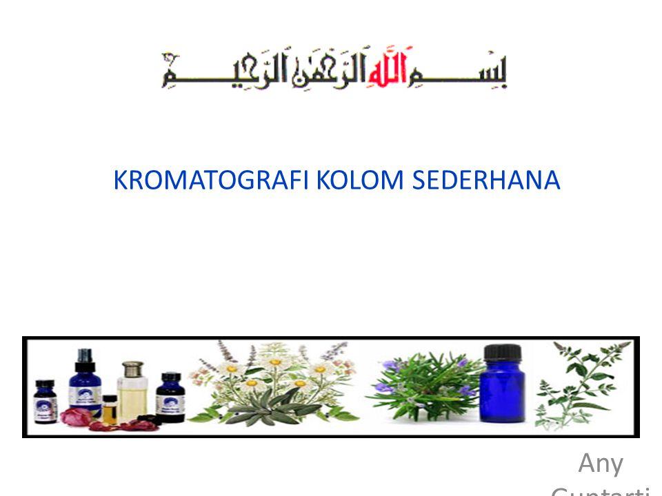 KROMATOGRAFI KOLOM SEDERHANA Any Guntarti