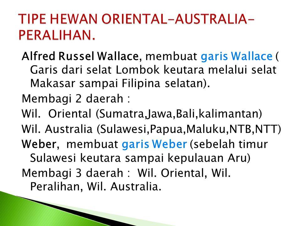 Alfred Russel Wallace, membuat garis Wallace ( Garis dari selat Lombok keutara melalui selat Makasar sampai Filipina selatan). Membagi 2 daerah : Wil.