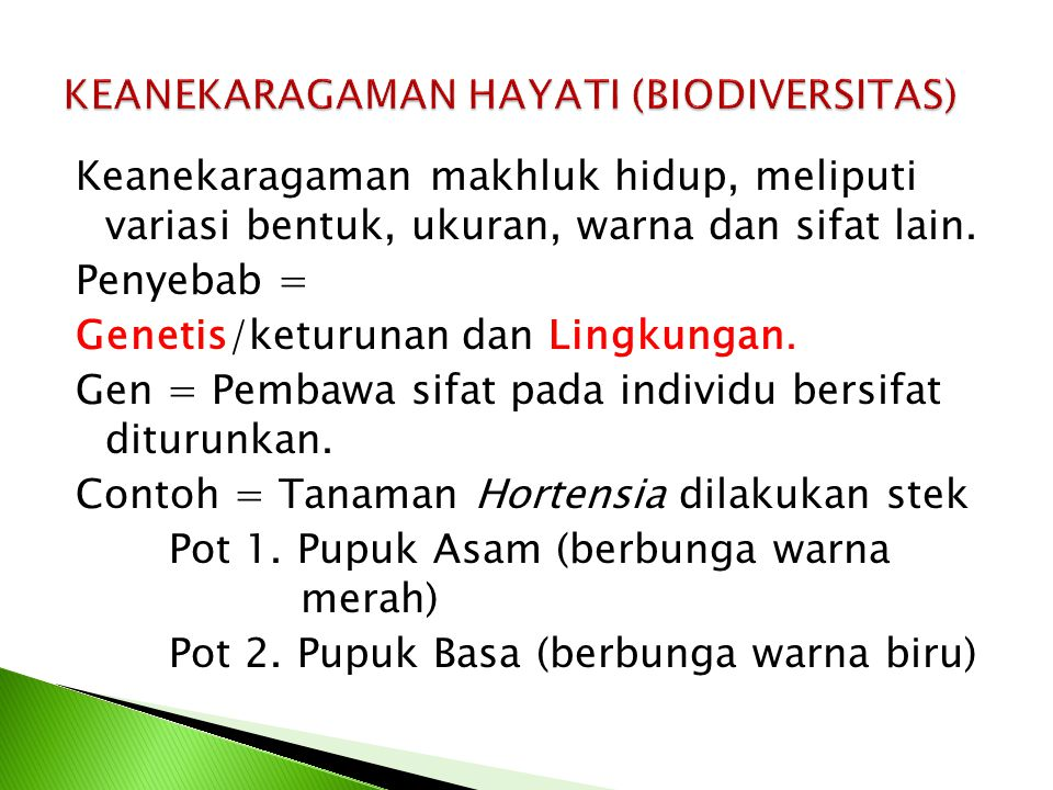 a.Flora di kawasan Indonesia barat misalnya: meranti b.