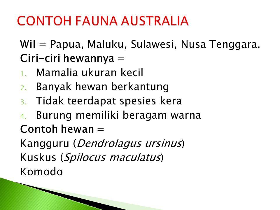 Wil = Papua, Maluku, Sulawesi, Nusa Tenggara. Ciri-ciri hewannya = 1. Mamalia ukuran kecil 2. Banyak hewan berkantung 3. Tidak teerdapat spesies kera