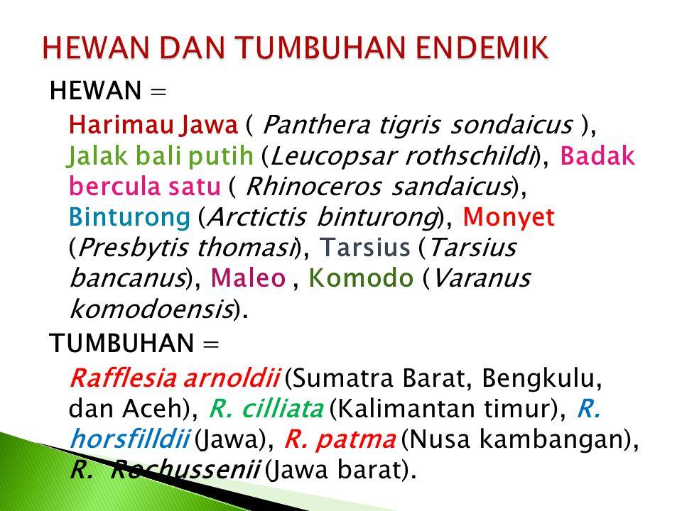 HEWAN = Harimau Jawa ( Panthera tigris sondaicus ), Jalak bali putih (Leucopsar rothschildi), Badak bercula satu ( Rhinoceros sandaicus), Binturong (Arctictis binturong), Monyet (Presbytis thomasi), Tarsius (Tarsius bancanus), Maleo, Komodo (Varanus komodoensis).