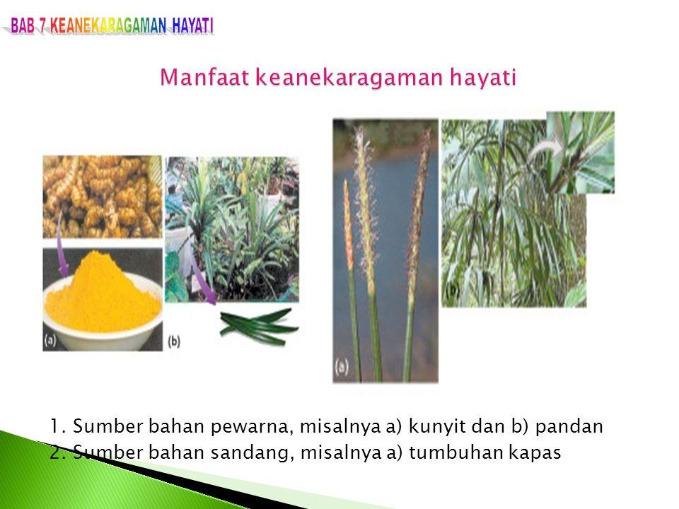 1. Sumber bahan pewarna, misalnya a) kunyit dan b) pandan 2. Sumber bahan sandang, misalnya a) tumbuhan kapas