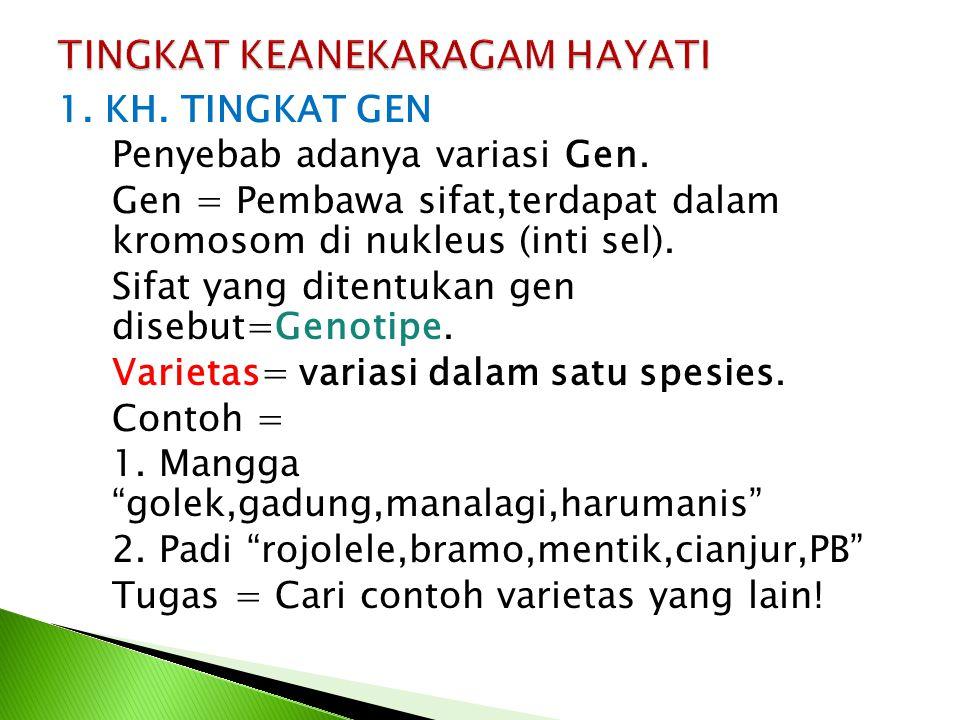 1. KH. TINGKAT GEN Penyebab adanya variasi Gen. Gen = Pembawa sifat,terdapat dalam kromosom di nukleus (inti sel). Sifat yang ditentukan gen disebut=G
