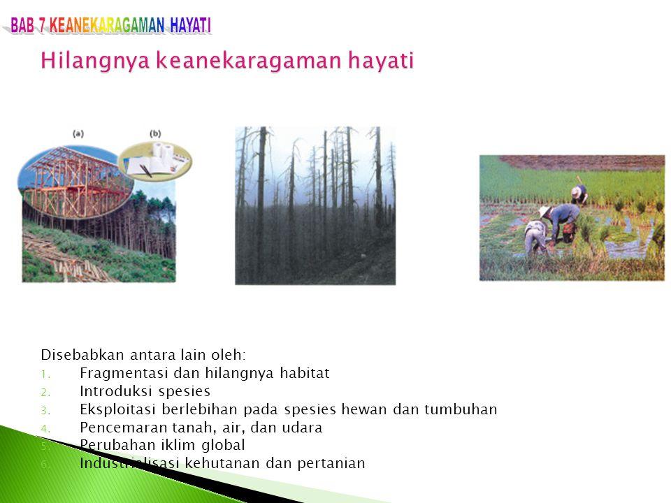 Disebabkan antara lain oleh: 1. Fragmentasi dan hilangnya habitat 2. Introduksi spesies 3. Eksploitasi berlebihan pada spesies hewan dan tumbuhan 4. P