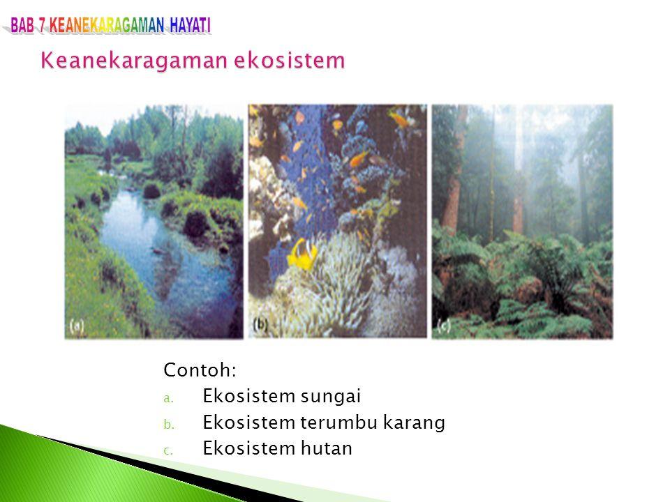 Contoh: a. Ekosistem sungai b. Ekosistem terumbu karang c. Ekosistem hutan