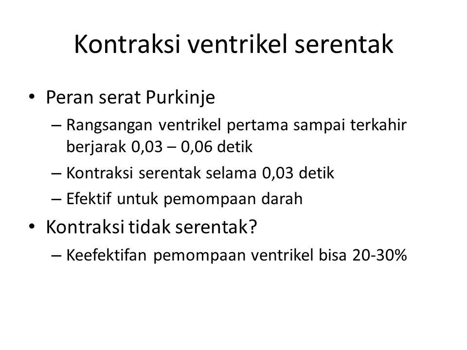 Kontraksi ventrikel serentak Peran serat Purkinje – Rangsangan ventrikel pertama sampai terkahir berjarak 0,03 – 0,06 detik – Kontraksi serentak selam