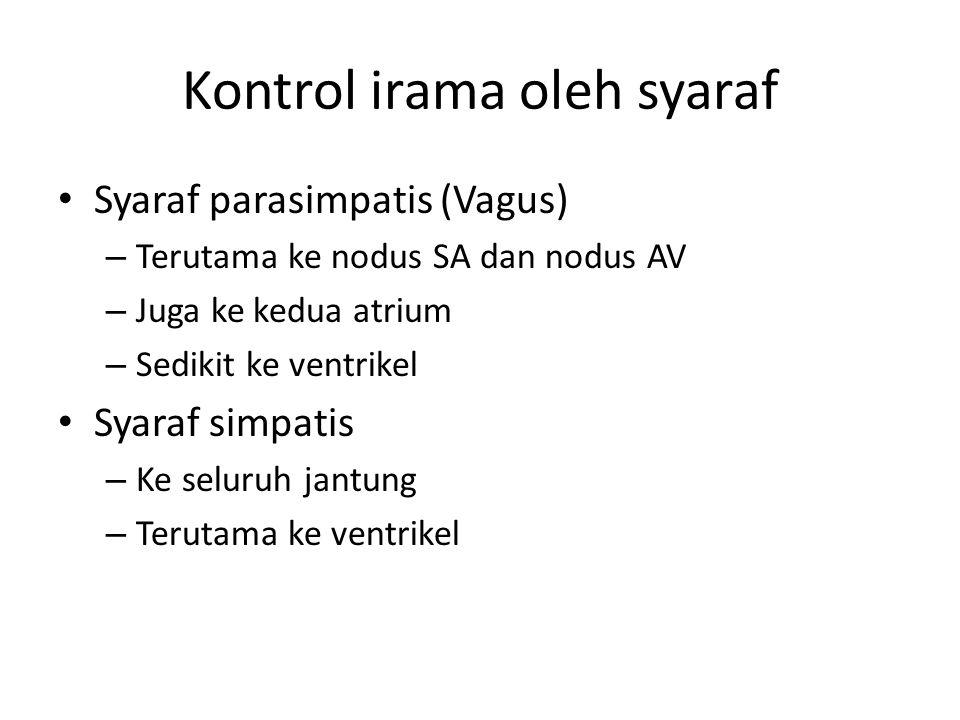 Kontrol irama oleh syaraf Syaraf parasimpatis (Vagus) – Terutama ke nodus SA dan nodus AV – Juga ke kedua atrium – Sedikit ke ventrikel Syaraf simpati