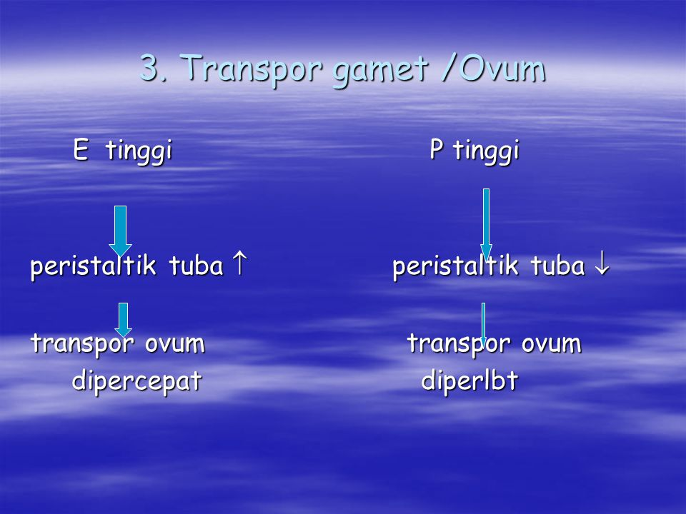 3. Transpor gamet /Ovum E tinggi P tinggi E tinggi P tinggi peristaltik tuba  peristaltik tuba  transpor ovum transpor ovum dipercepat diperlbt dipe