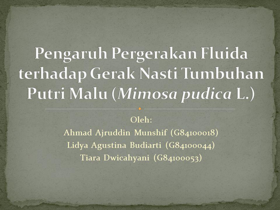 Oleh: Ahmad Ajruddin Munshif (G84100018) Lidya Agustina Budiarti (G84100044) Tiara Dwicahyani (G84100053)