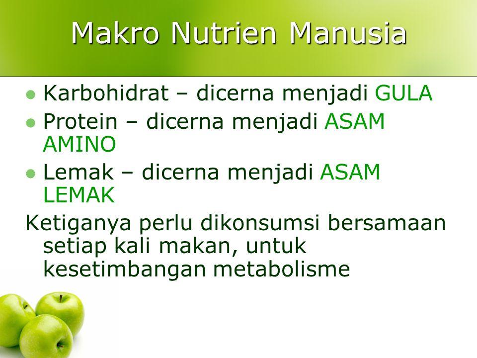 Makro Nutrien Manusia Karbohidrat – dicerna menjadi GULA Protein – dicerna menjadi ASAM AMINO Lemak – dicerna menjadi ASAM LEMAK Ketiganya perlu dikon