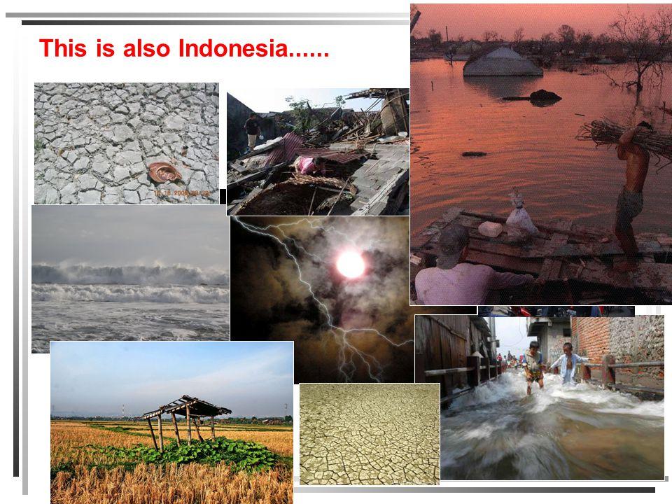 PEMBANGUNAN INDONESIA Pertumbuhan ekonomi nasional selama ini masih didominasi eksploitasi SDA, terutama pemakaian fossil fuel (minyak bumi dan batubara) BENCANA LINGKUNGAN KELANGKAAN SDA KUALITAS LINGKUNGAN MEMBURUK