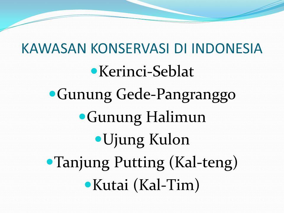 KAWASAN KONSERVASI DI INDONESIA Kerinci-Seblat Gunung Gede-Pangranggo Gunung Halimun Ujung Kulon Tanjung Putting (Kal-teng) Kutai (Kal-Tim)