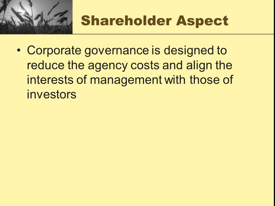 Shareholder Aspect Corporate governance is designed to reduce the agency costs and align the interests of management with those of investors