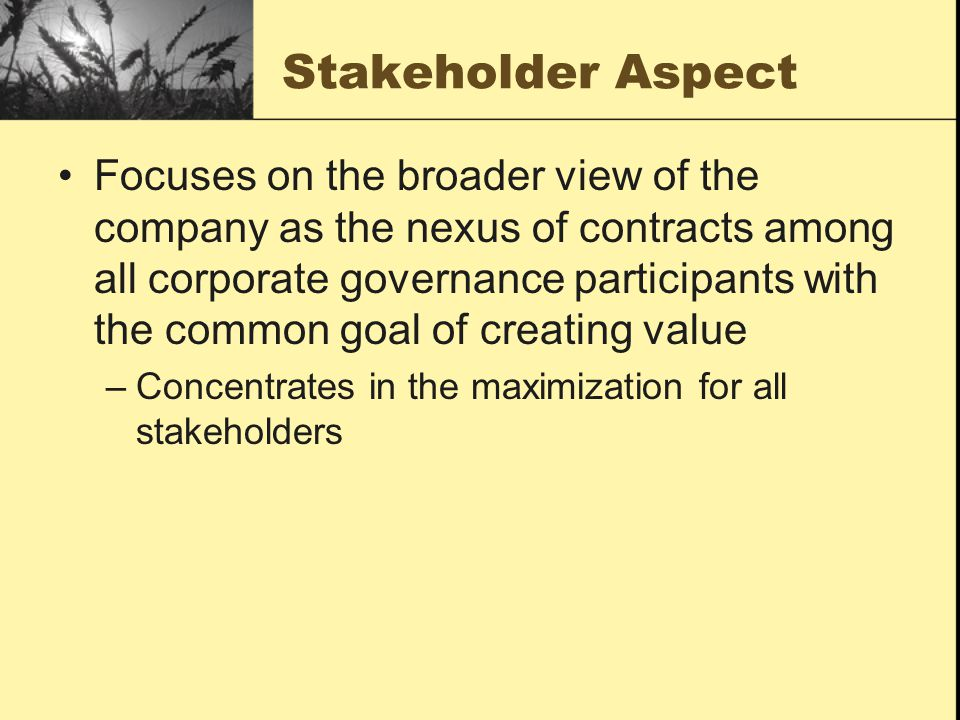 Stakeholder Aspect Focuses on the broader view of the company as the nexus of contracts among all corporate governance participants with the common go