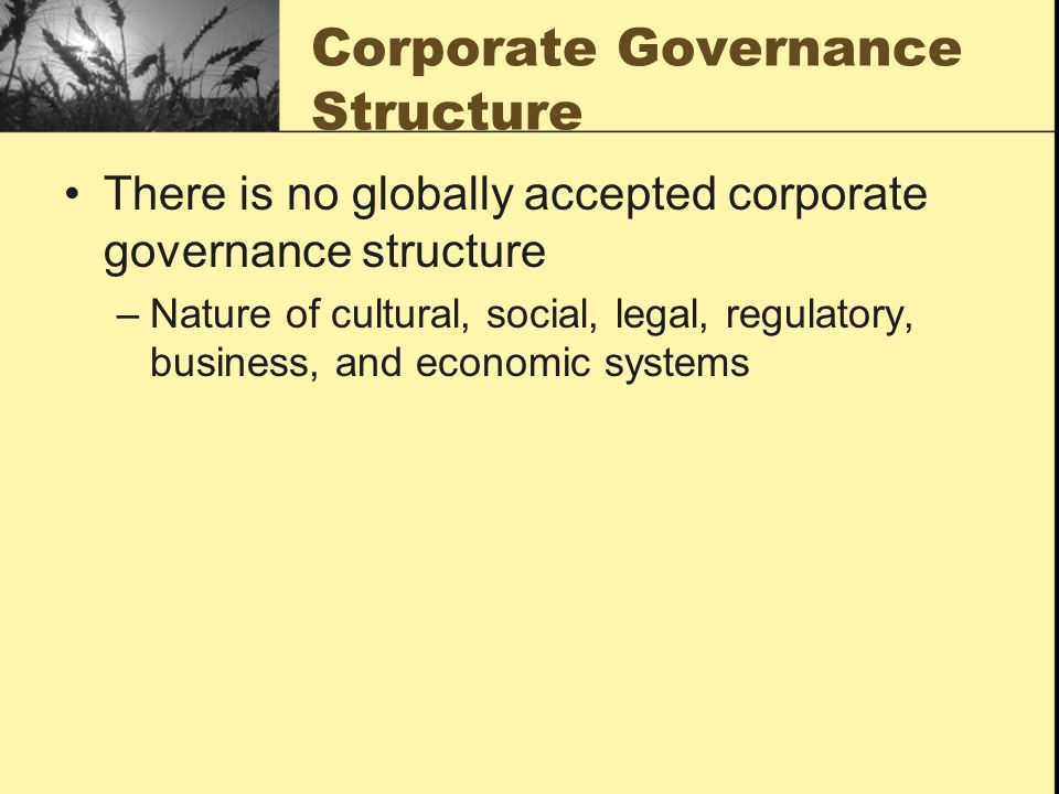 Corporate Governance Structure There is no globally accepted corporate governance structure –Nature of cultural, social, legal, regulatory, business,