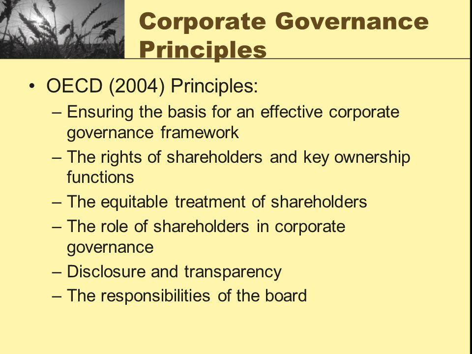 Corporate Governance Principles OECD (2004) Principles: –Ensuring the basis for an effective corporate governance framework –The rights of shareholder