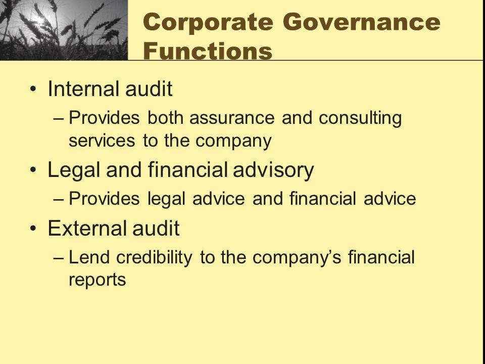 Corporate Governance Functions Internal audit –Provides both assurance and consulting services to the company Legal and financial advisory –Provides legal advice and financial advice External audit –Lend credibility to the company's financial reports