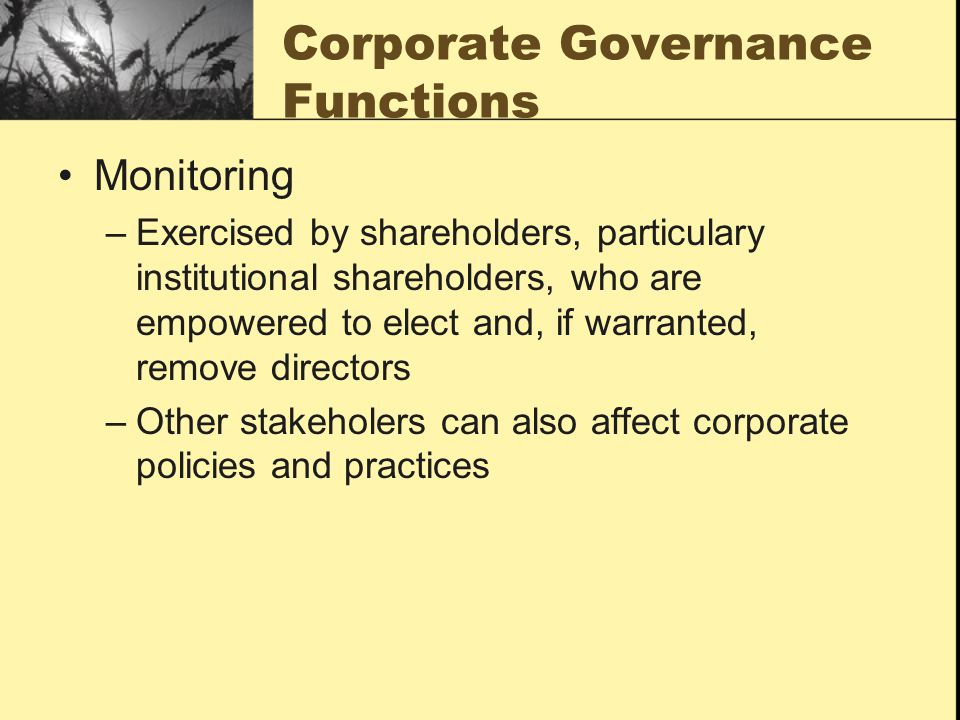 Corporate Governance Functions Monitoring –Exercised by shareholders, particulary institutional shareholders, who are empowered to elect and, if warranted, remove directors –Other stakeholers can also affect corporate policies and practices