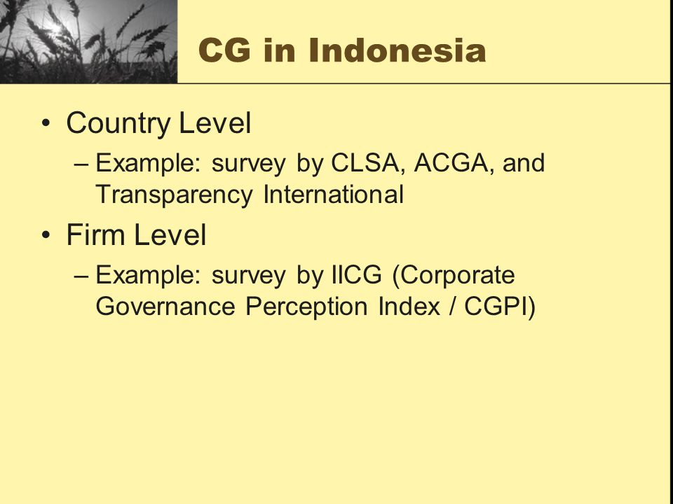 CG in Indonesia Country Level –Example: survey by CLSA, ACGA, and Transparency International Firm Level –Example: survey by IICG (Corporate Governance