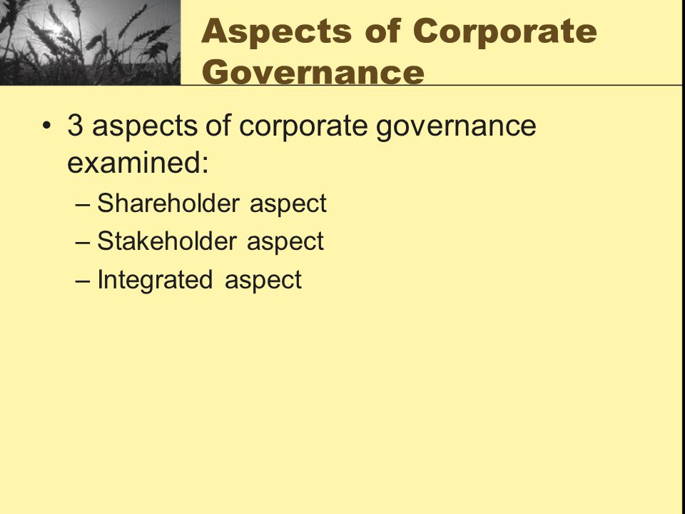 Aspects of Corporate Governance 3 aspects of corporate governance examined: –Shareholder aspect –Stakeholder aspect –Integrated aspect