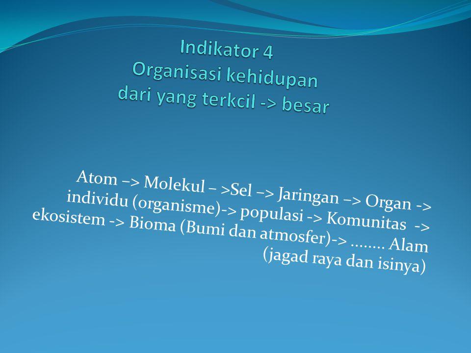 Atom –> Molekul – >Sel –> Jaringan –> Organ -> individu (organisme)-> populasi -> Komunitas -> ekosistem -> Bioma (Bumi dan atmosfer)->........ Alam (