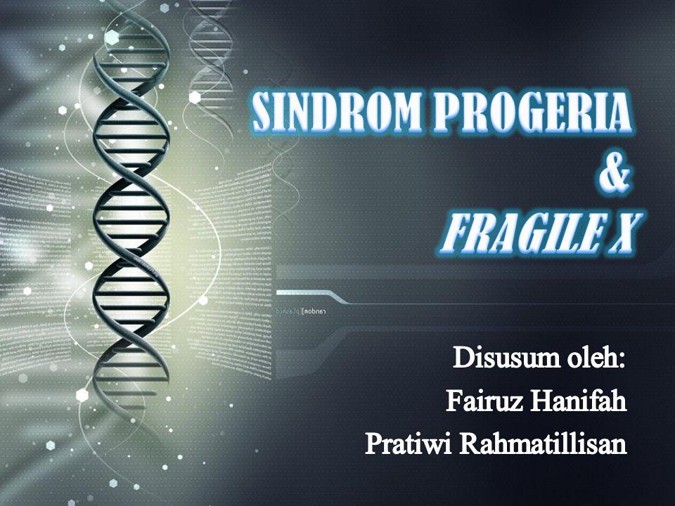 GAMBAR KROMOSOM FRAGILE X Gen yang rusak berada pada area kromosom yang tampak rapuh, sehingga disebut sindrom fragile X.