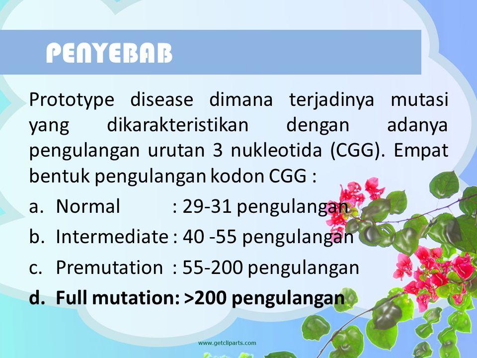 Prototype disease dimana terjadinya mutasi yang dikarakteristikan dengan adanya pengulangan urutan 3 nukleotida (CGG). Empat bentuk pengulangan kodon