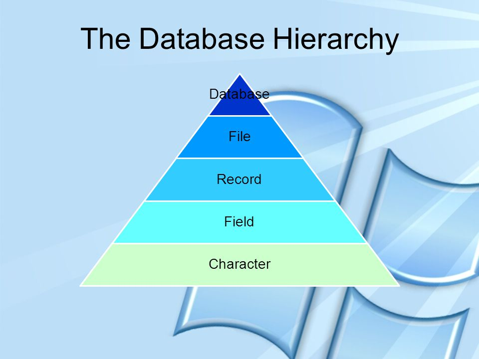 The Database Hierarchy Character File Record Field Dbase Database File Record Field Character