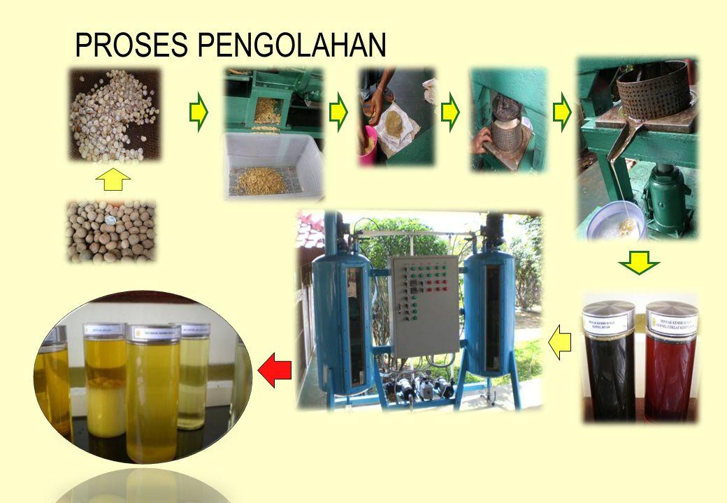 UJI COBA BIODIESEL KEMIRI SUNAN PADA MESIN POMPA STATIS Biodiesel Kemiri Sunan telah dibuktikan pada Uji Coba untuk menjalankan mesin pompa statis..