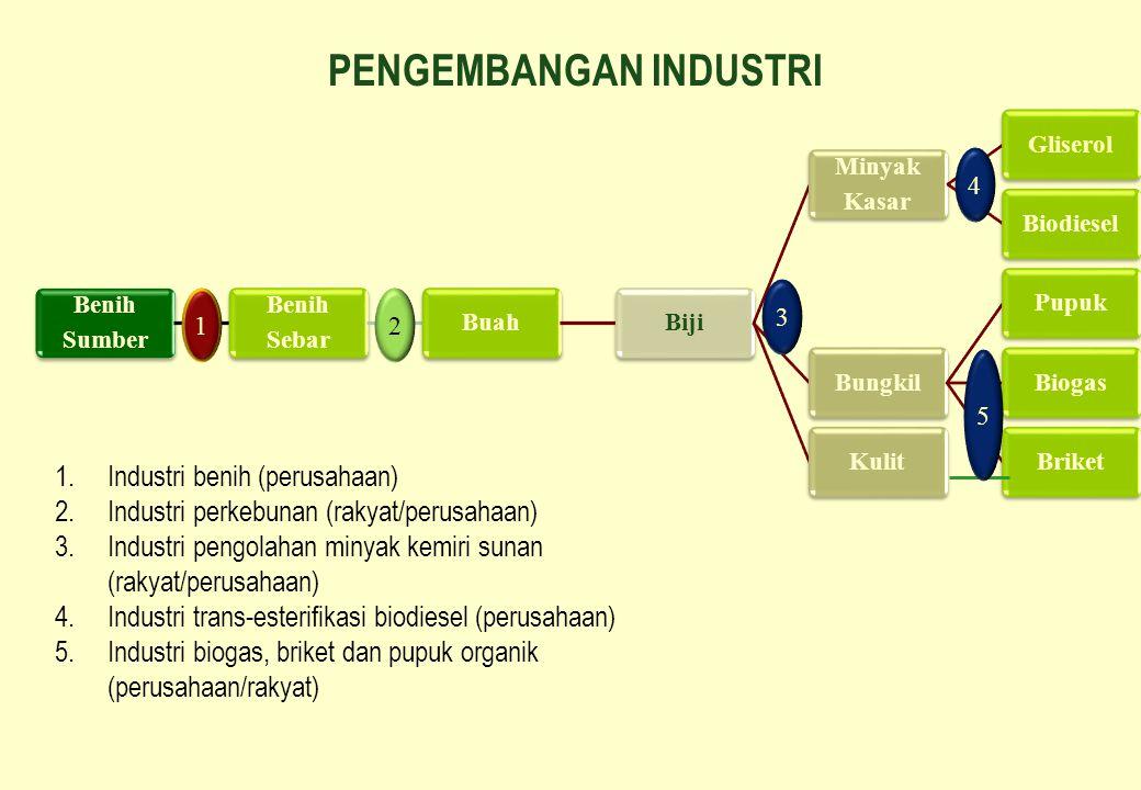 PENGEMBANGAN INDUSTRI 1.Industri benih (perusahaan) 2.Industri perkebunan (rakyat/perusahaan) 3.Industri pengolahan minyak kemiri sunan (rakyat/perusa