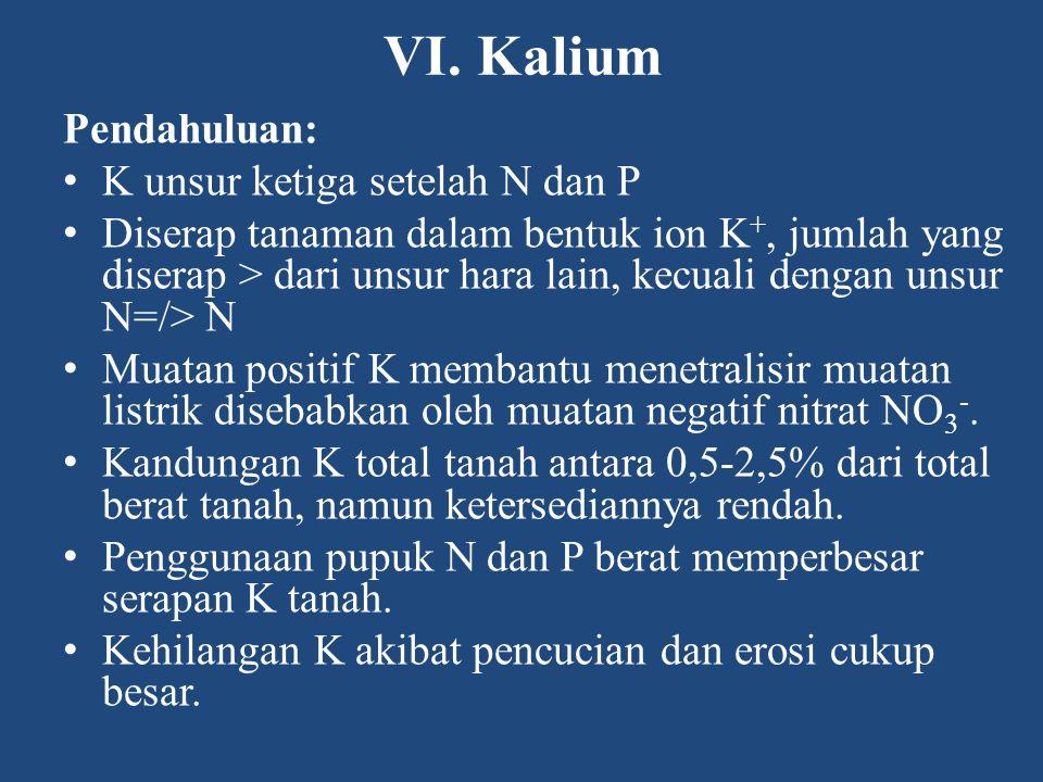 VI. Kalium Pendahuluan: K unsur ketiga setelah N dan P Diserap tanaman dalam bentuk ion K +, jumlah yang diserap > dari unsur hara lain, kecuali denga