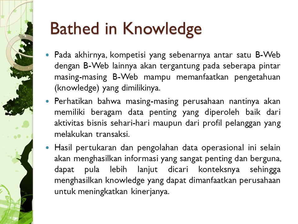 Bathed in Knowledge Pada akhirnya, kompetisi yang sebenarnya antar satu B-Web dengan B-Web lainnya akan tergantung pada seberapa pintar masing-masing B-Web mampu memanfaatkan pengetahuan (knowledge) yang dimilikinya.