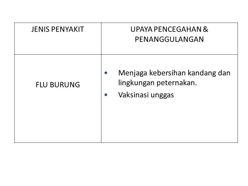 JENIS PENYAKITUPAYA PENCEGAHAN & PENANGGULANGAN FLU BURUNG Menjaga kebersihan kandang dan lingkungan peternakan. Vaksinasi unggas