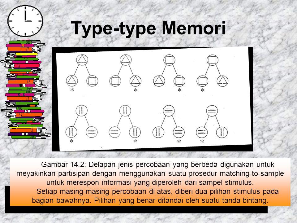 Type-type Memori Gambar 14.2: Delapan jenis percobaan yang berbeda digunakan untuk meyakinkan partisipan dengan menggunakan suatu prosedur matching-to-sample untuk merespon informasi yang diperoleh dari sampel stimulus.